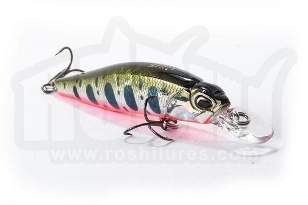 rozanrozante 63 DUO by roshi fishing PORTADAte 63 DUO by roshi fishing PORTADA